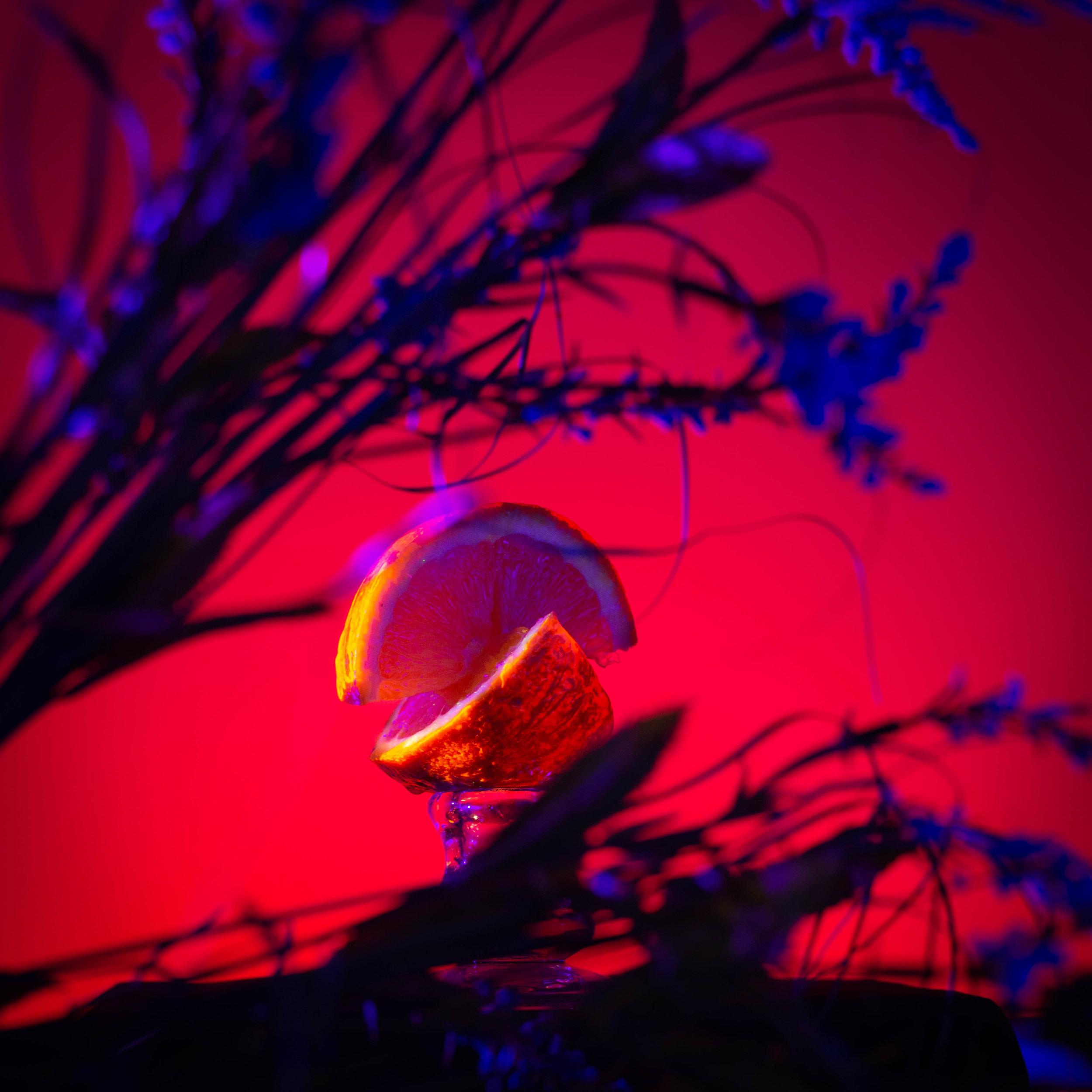 UV-Photography-5.jpg