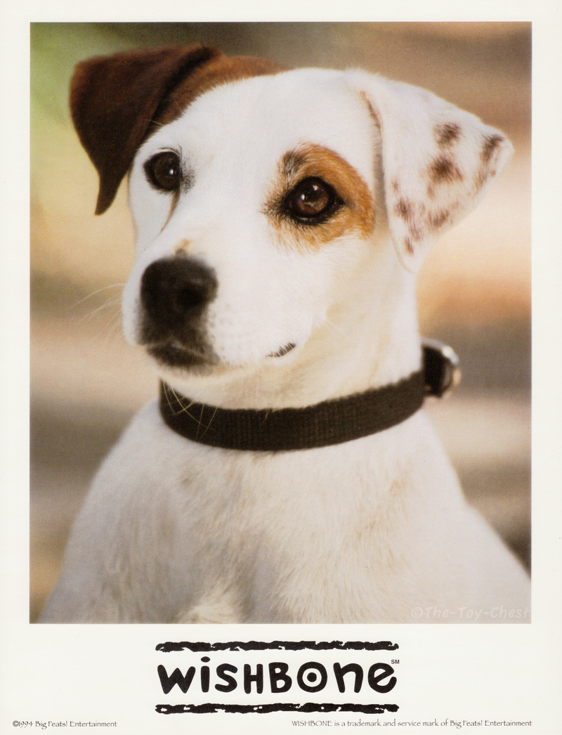wishbone___early_press_photo_by_the_toy_chest-d9guzxp.png