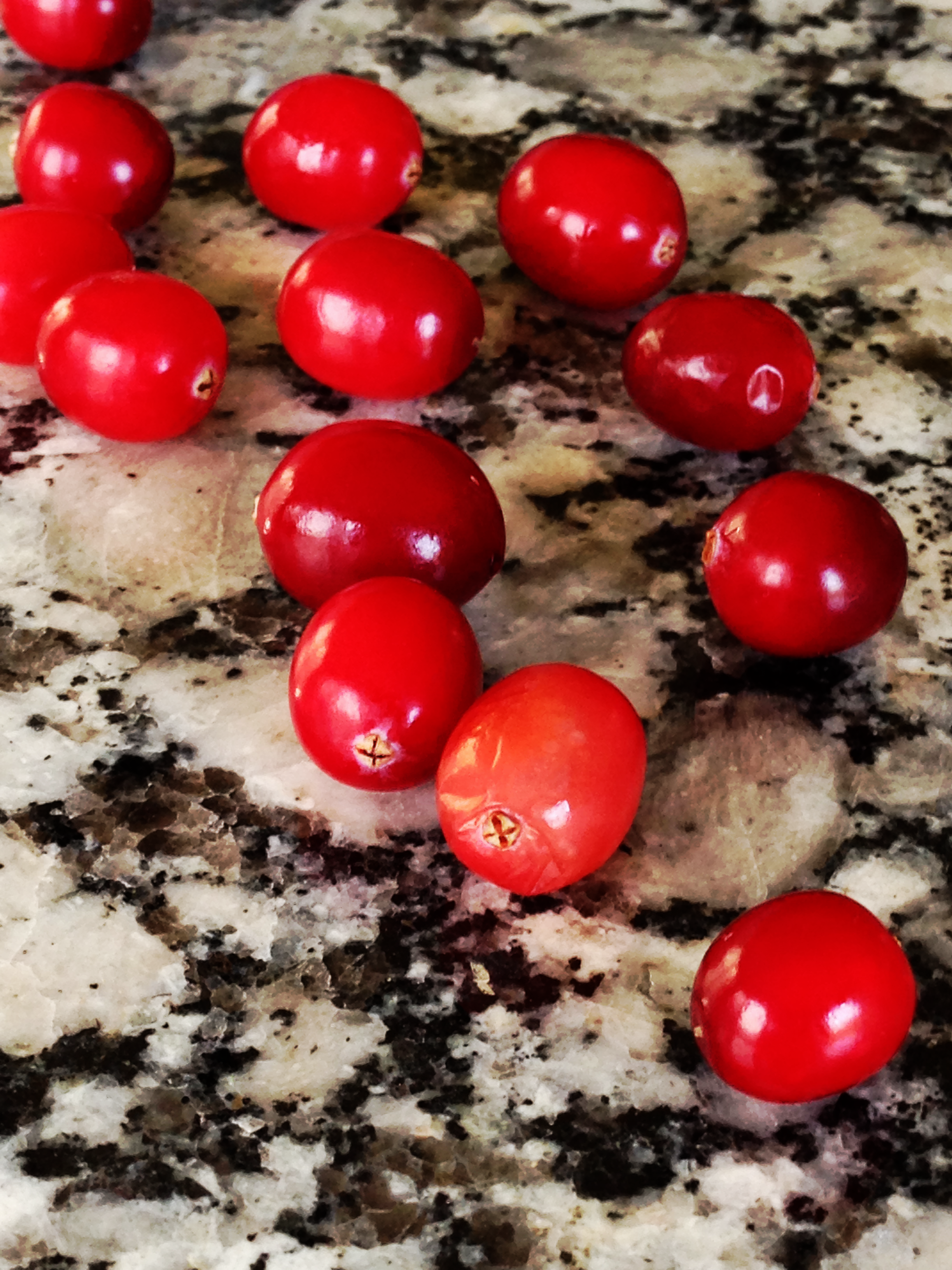 All Things Cranberry! Our Favorite Cranberry Recipes