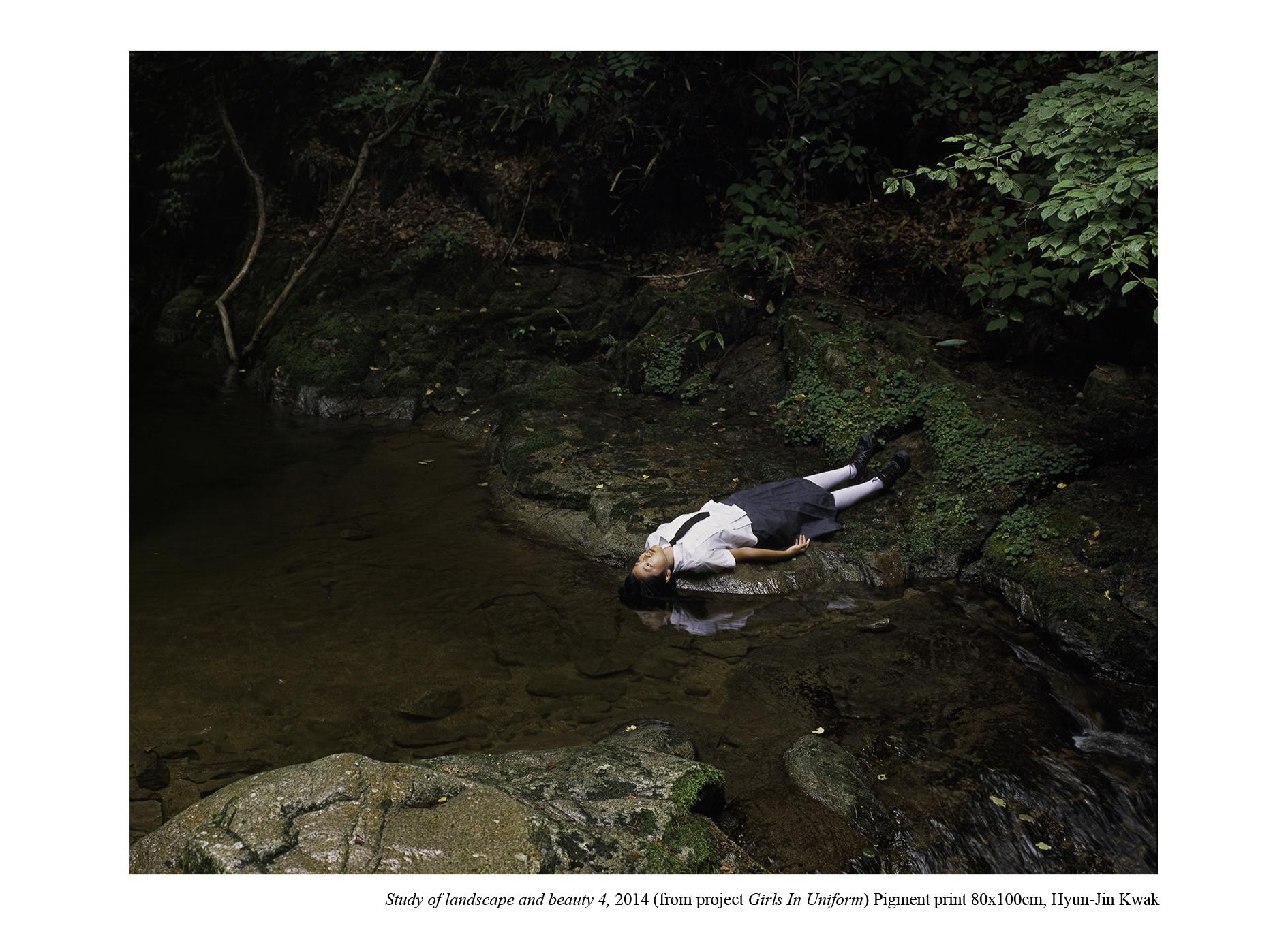 Hyun-Jin Kwak,  Study of Landscape and Beauty 4, 2014,80(H)x100(W)cm inkjet print