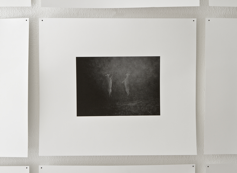 Blinded by the light_dokumentation fran Uni.Galleri, Goteborg.2012_3.jpg