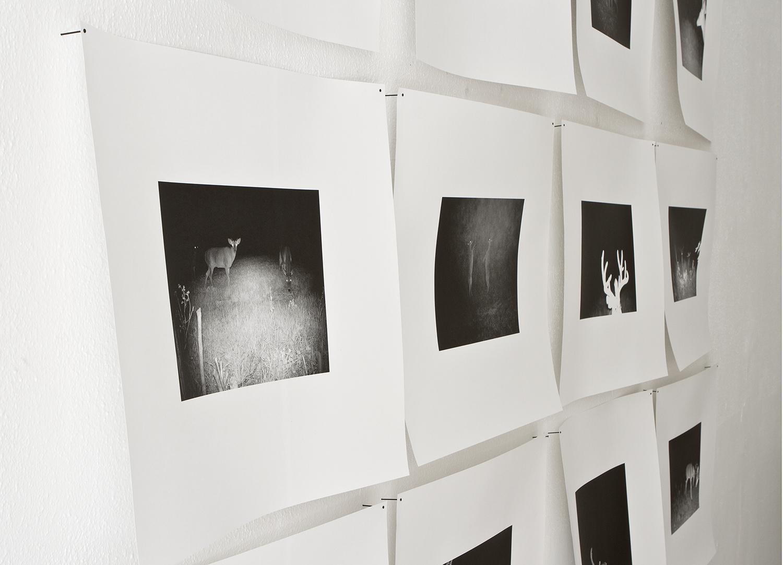 Blinded by the light_dokumentation fran Uni.Galleri, Goteborg.2012_2.jpg