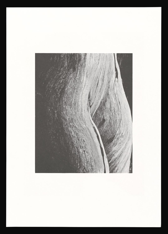 LA_EIB_Poster_neat_2.jpg
