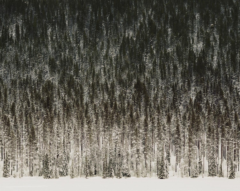 ©Helene Schmitz_Abstracti kopia.JPG