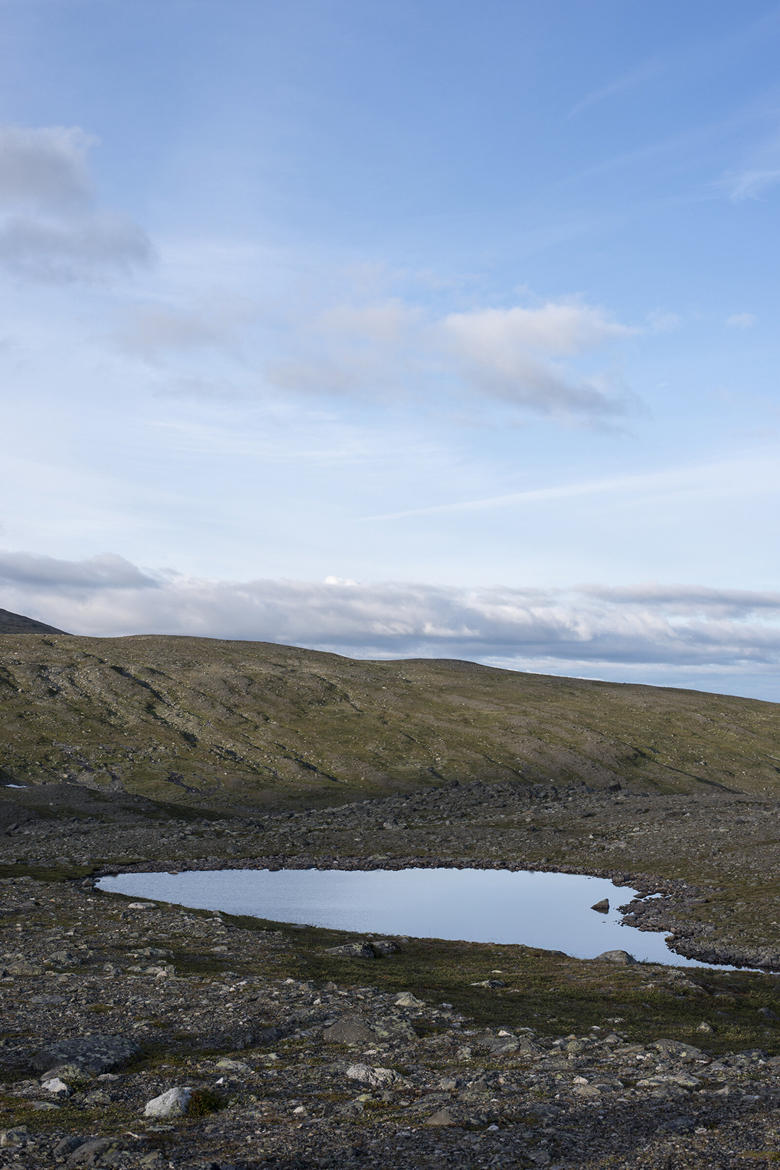 Sjön, The margin of Error.jpg