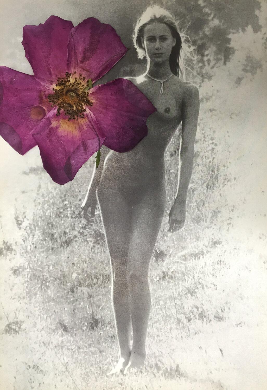 flower  body.jpg