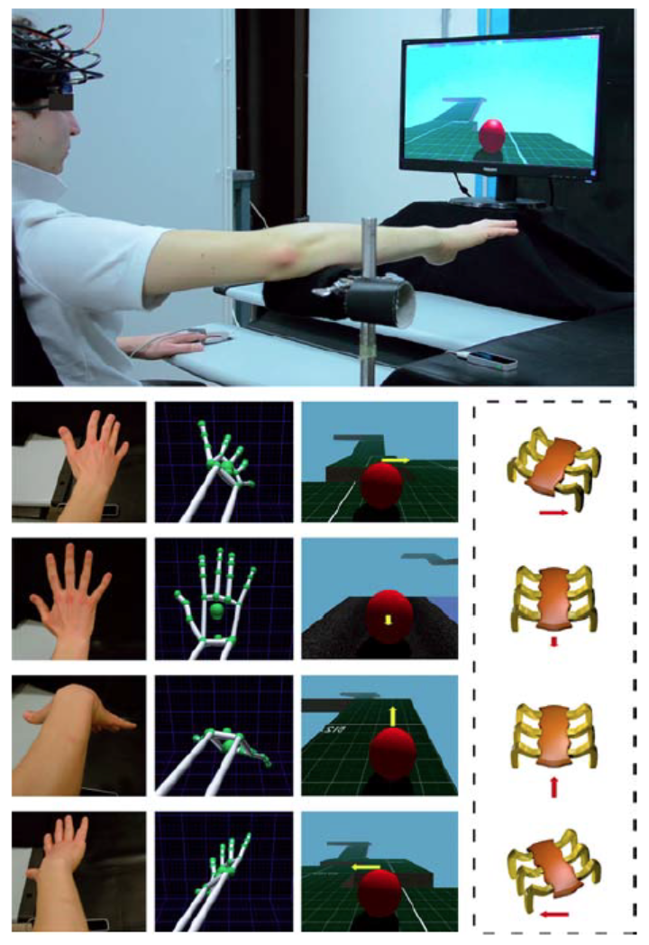 FIGURE 1 |Experimental setting for the execution of a virtual reality (VR) hand-controlled task (HCT).