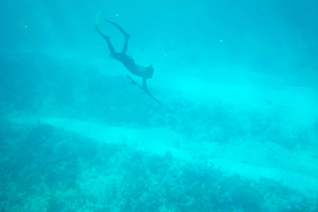Sunday's spearfishing with friends at the barrier reef · Caye Caulker 2007