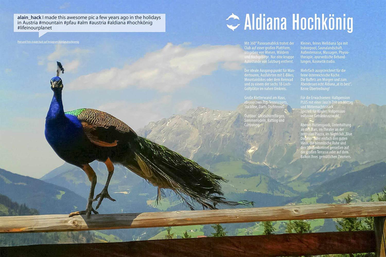 Hochkönig Echt Aldiana Katalog Sommer 2016 Instagram