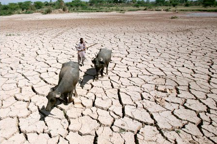 """""""Climate change is the biggest risk to progress in global development. Here's what you need to know"""",    WhyDev   , 31 March 2014."""