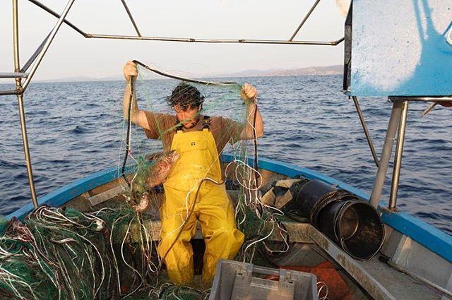 Last week to visit #cittadinidelmare #citizenofthesea at #museointrastevere #rome - small scale #fishermen #wwfmediterranean FishMPABlue2 #interregmed