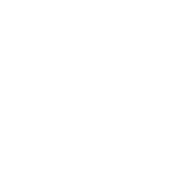 Icons 64px_Steering Wheel.png