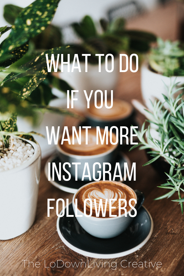 want-more-instagram-followers-the-lodownliving.png