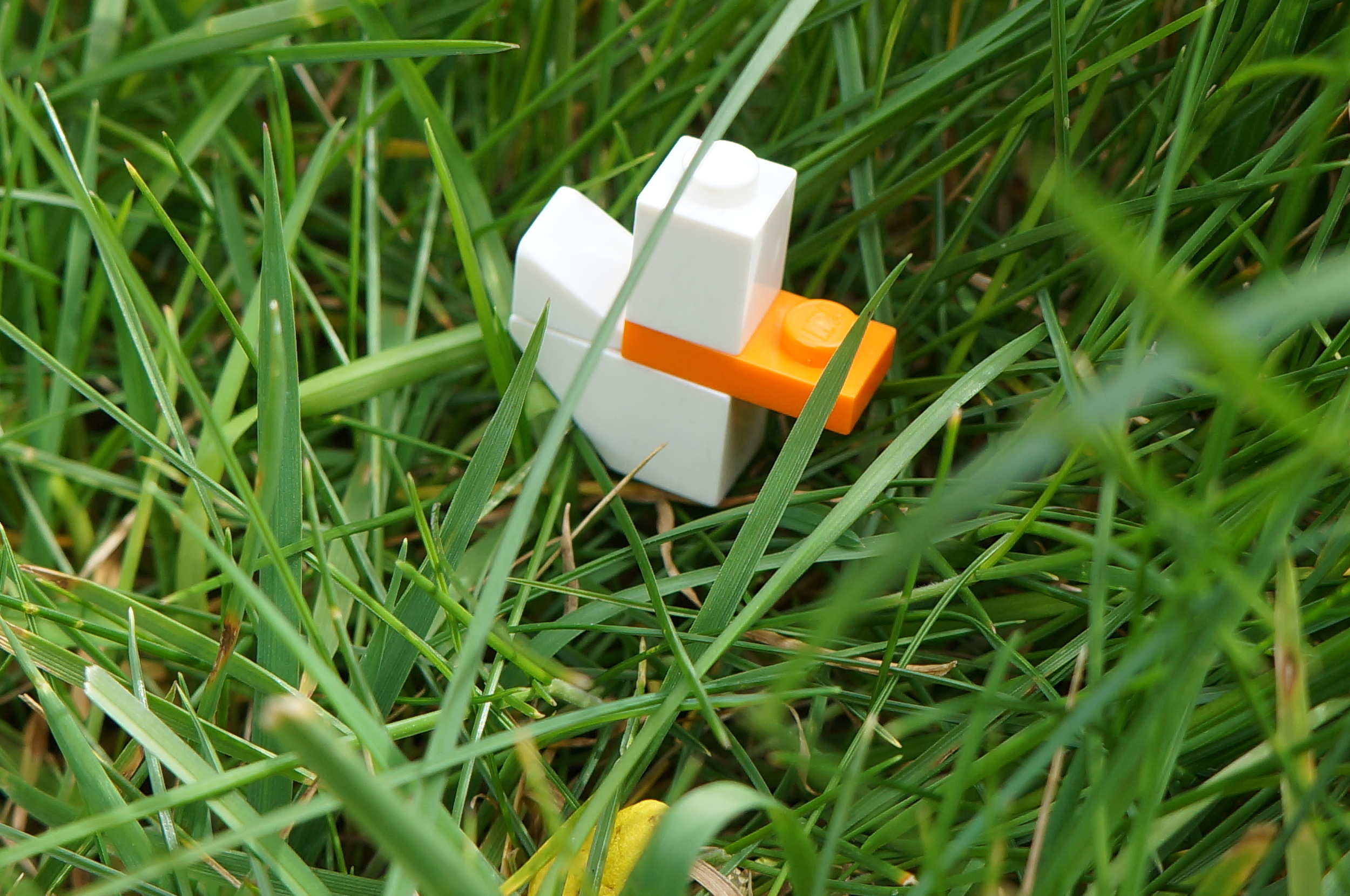Close up view of a four-brick Lego duck in the grass. Photo©Narjas Carrington