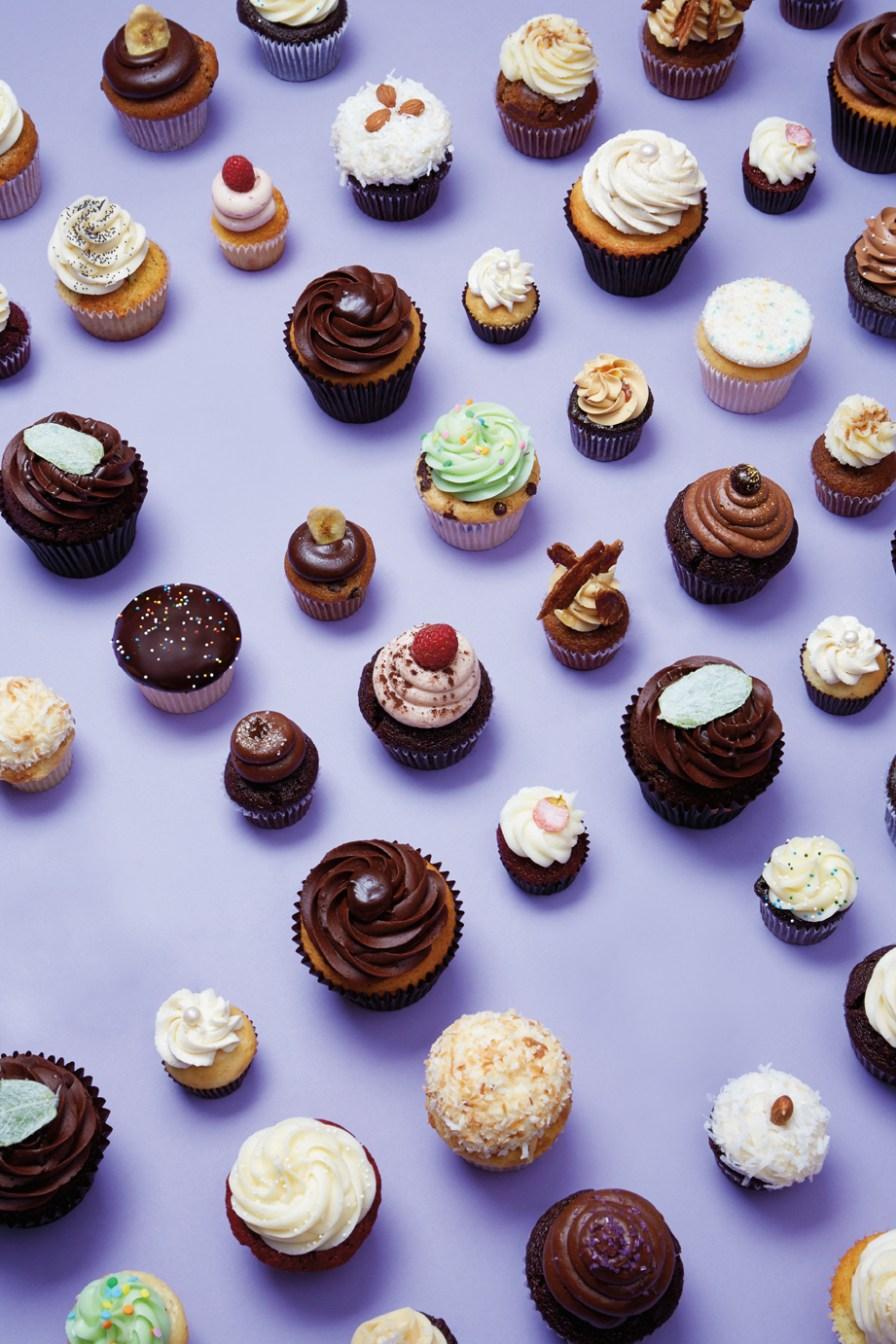 cupcake_layout_v2-copy.jpg