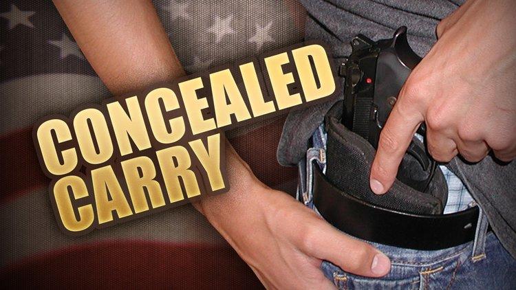 Concealed+Gun.jpg