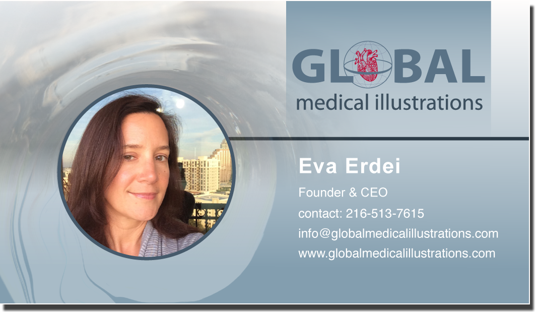 Global Medical Illustrations is located in Tampa, FL