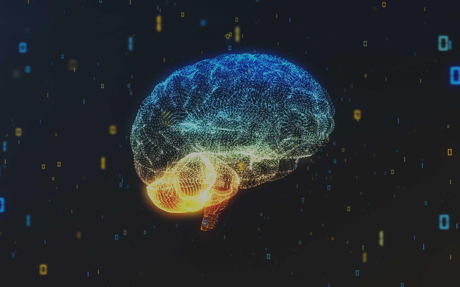 rewire brain.jpg