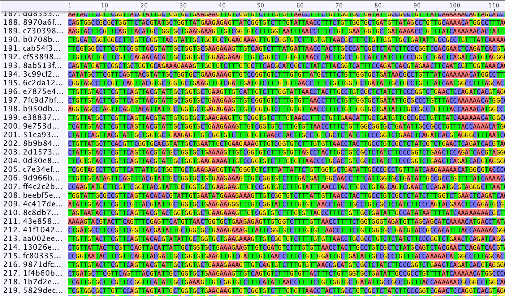 Screen shot of some of the raw barcode nanopore data