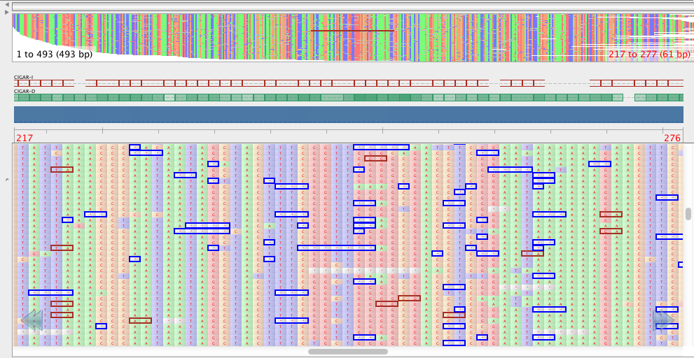 Some of the sequence data produced from the MinION sequencer.