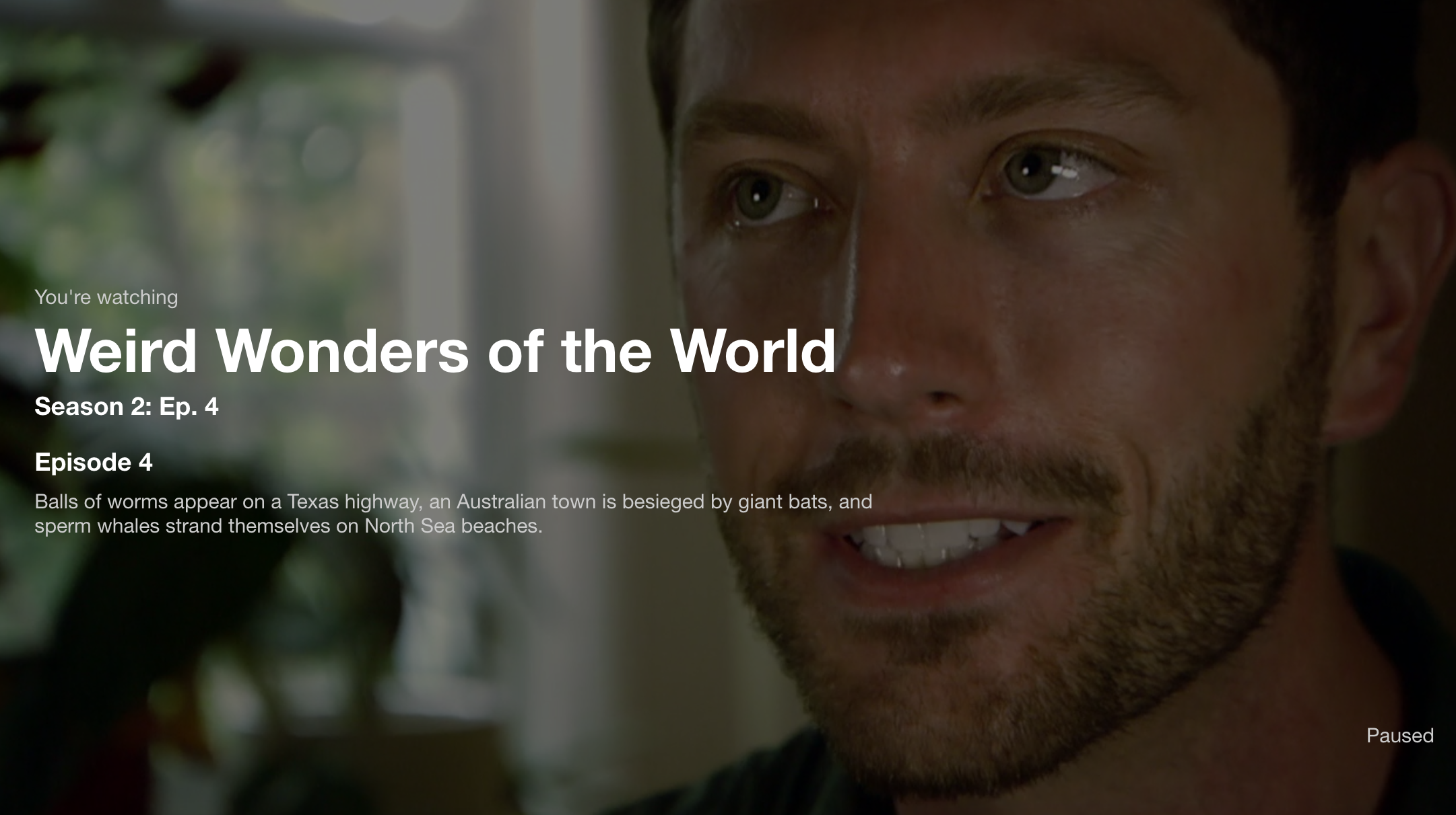 Talking about several fun bug stories on BBC's Weird Wonders of the World! Check it out on  Netlfix: goo.gl/GY1TZi