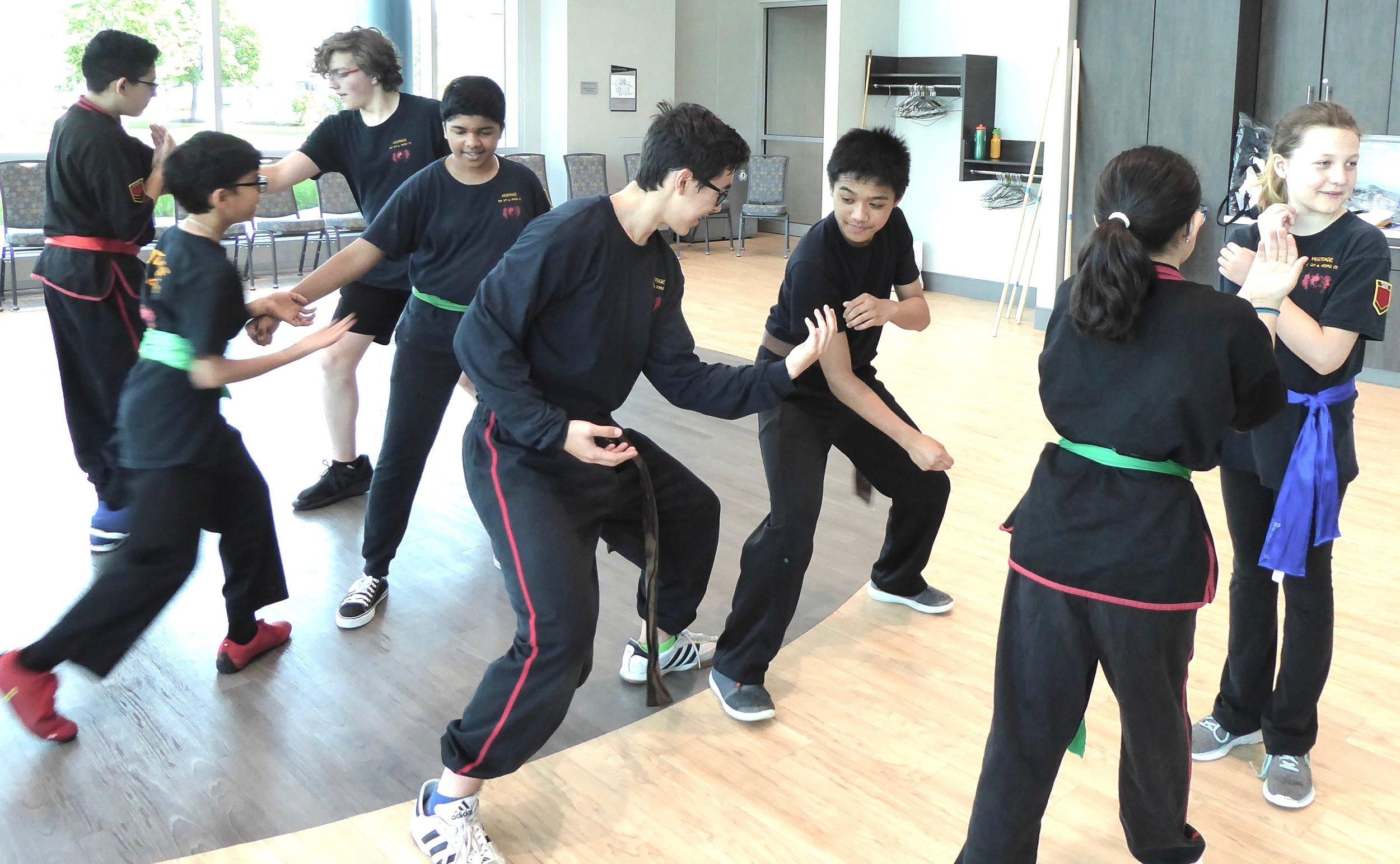 Kids Kung Fu in aurora Il