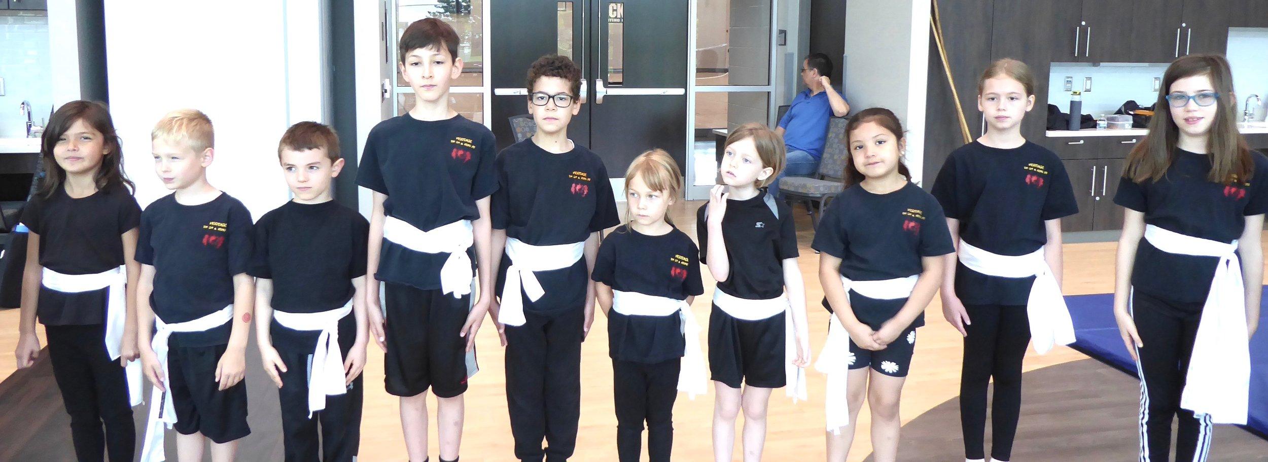 Kids Kung Fu class, Aurora Illinois