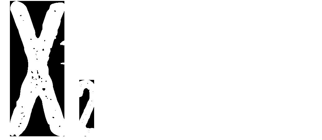 X2 Decoy Raft logo