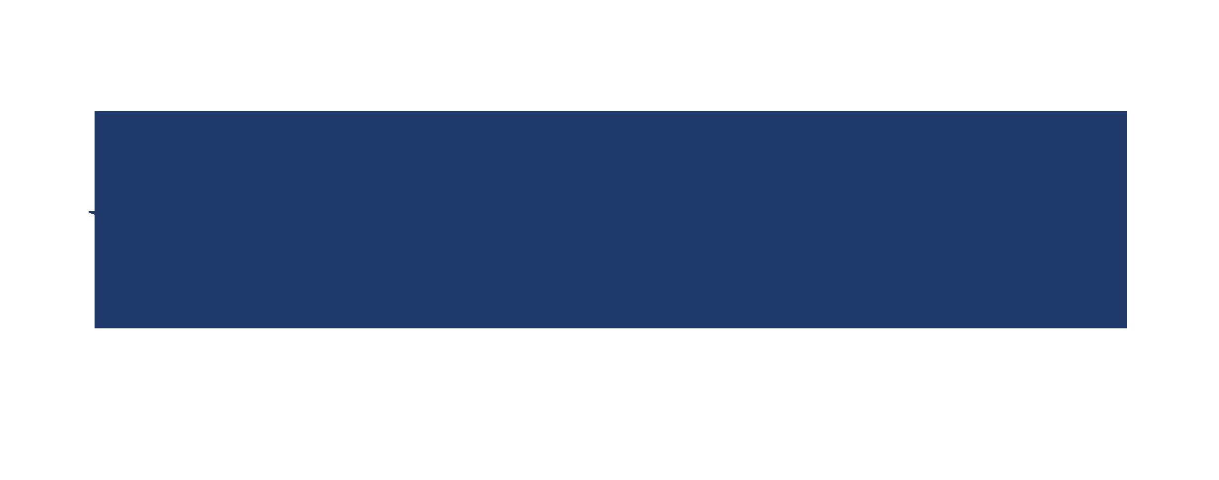 DecoyRaft-Logo-Dark_Blue.png