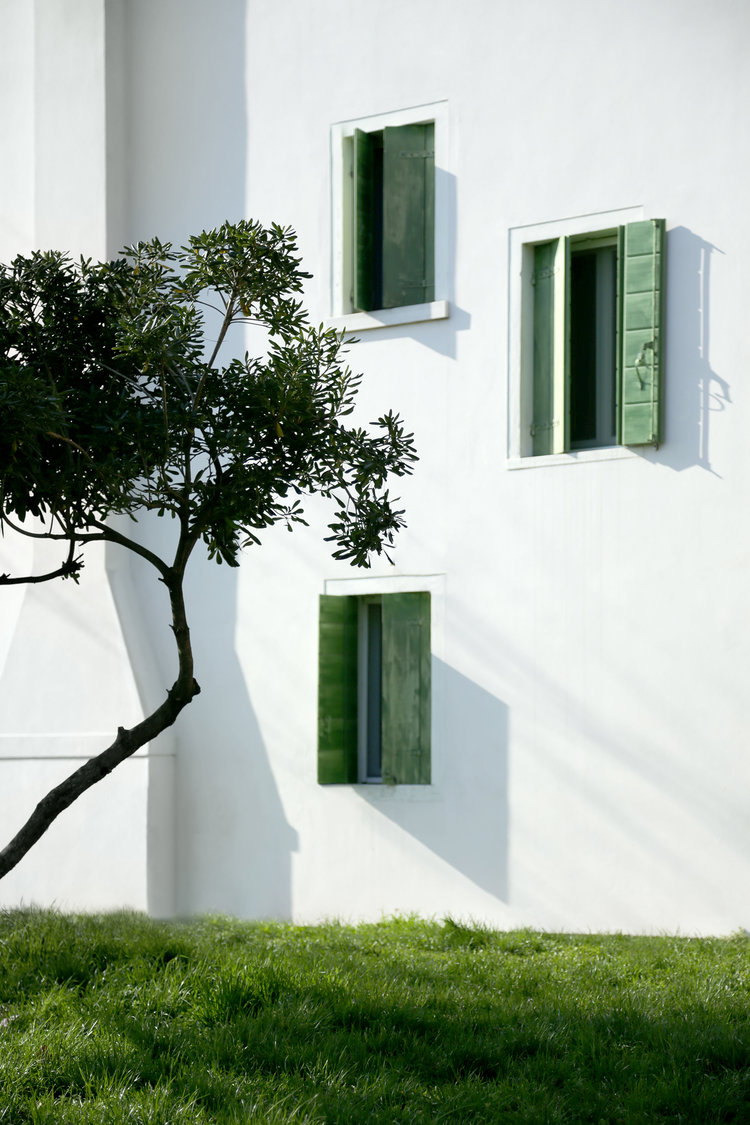 alex foster photographer travel venice green tree windows white wall architecture london essex dublin freelance lonely planet.jpg