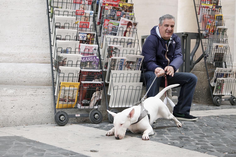 rome - bull terrier magazines 2rs.jpg