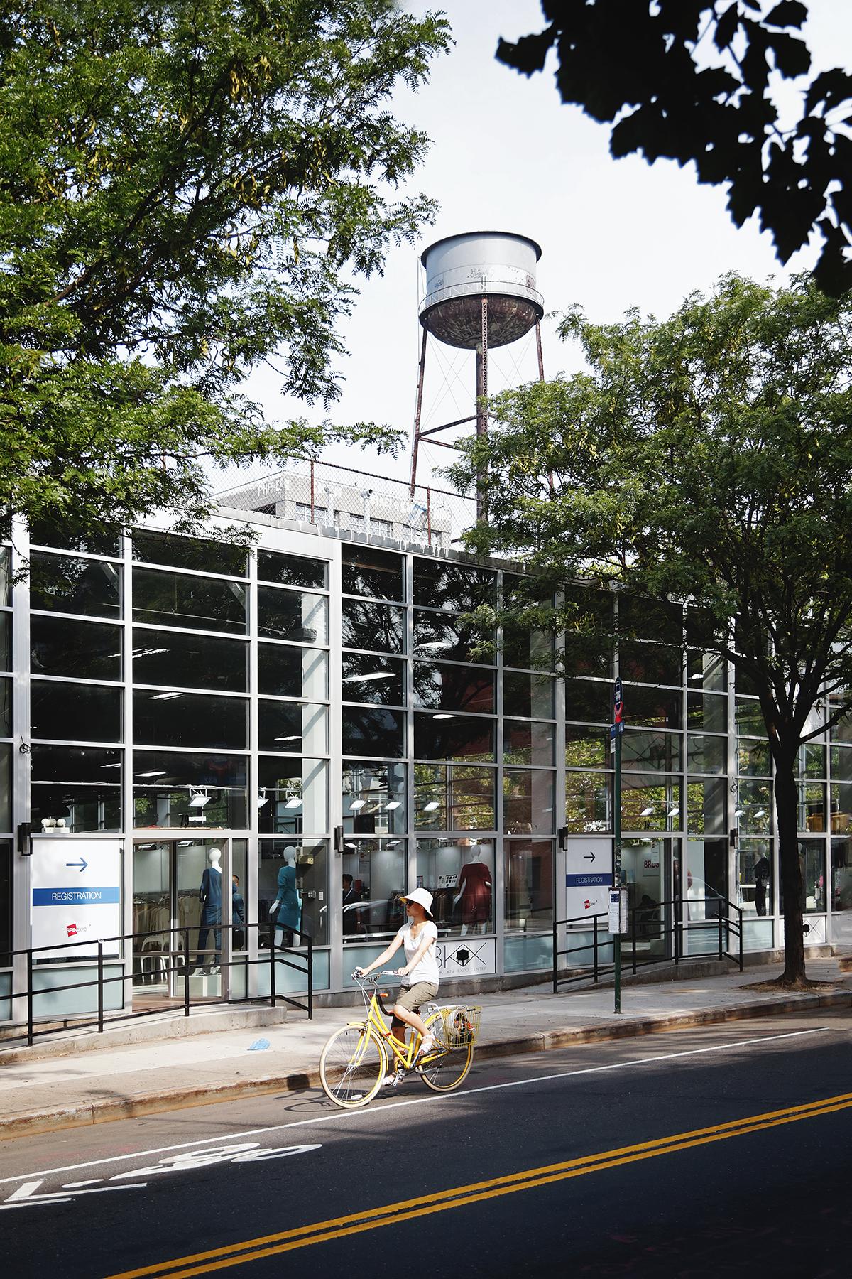 nyc - bike trees watertower.jpg