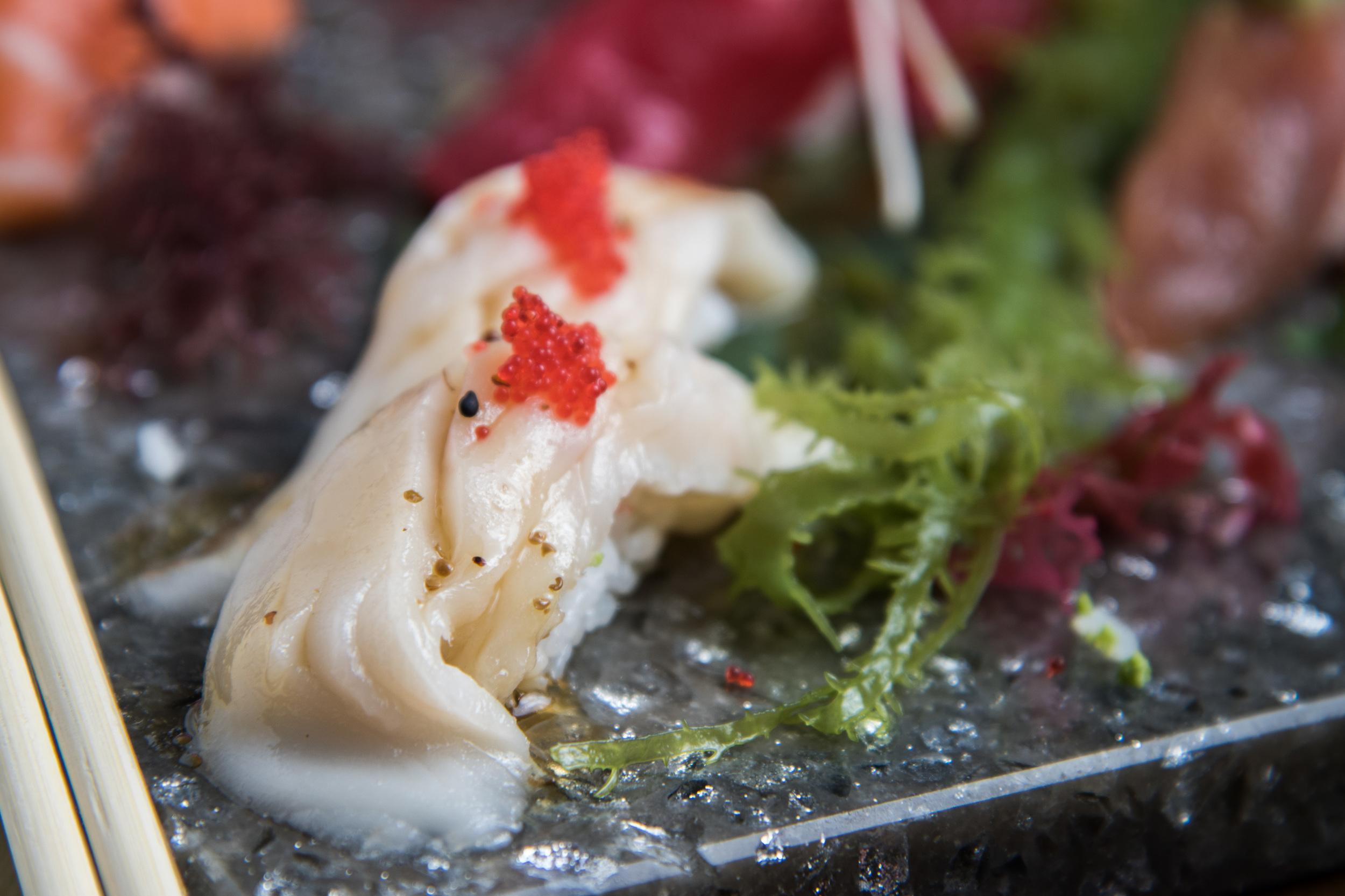 Shiro Maguro Sushi