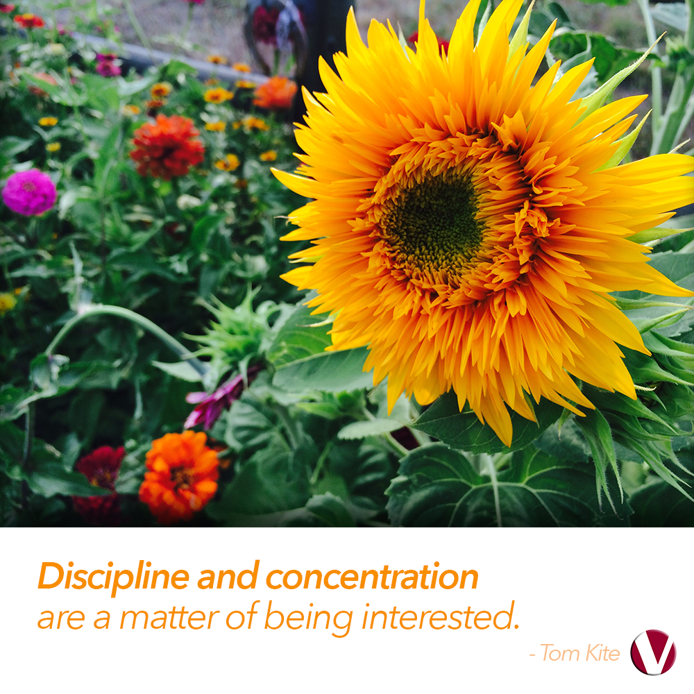discipline and concentration are a matter of being interested