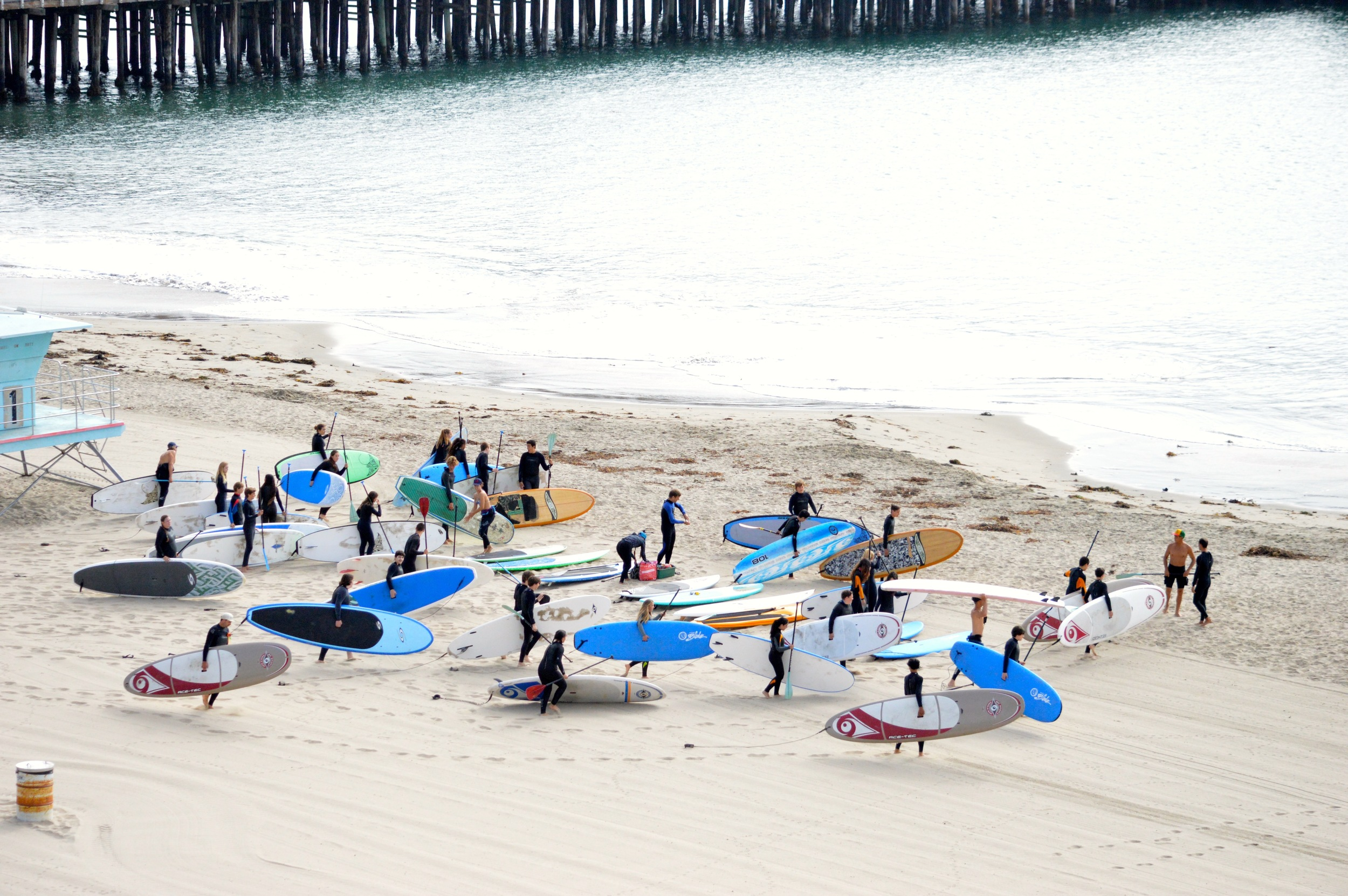 Paddleboarders heading towards water.jpg