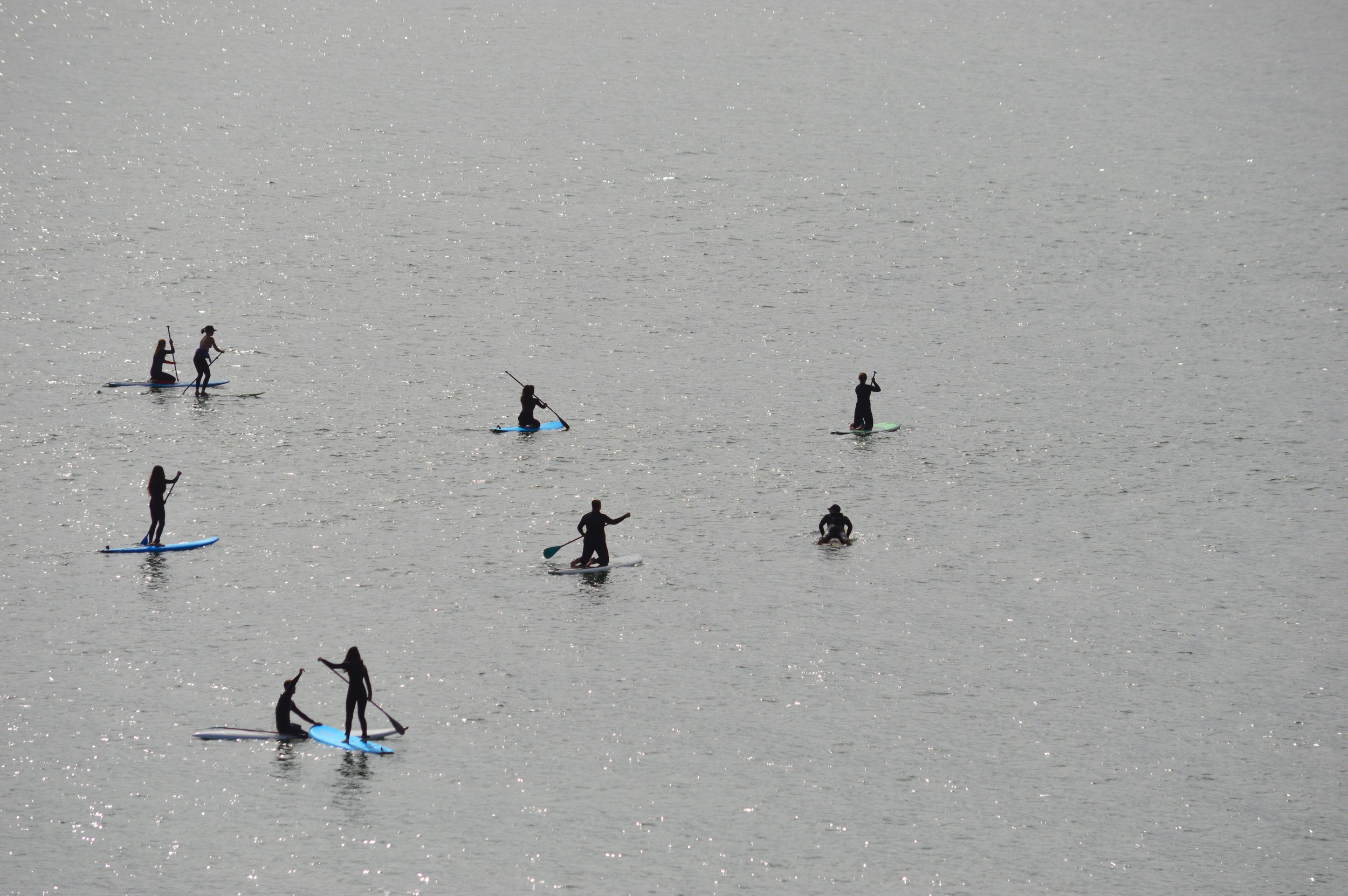 Team Paddleboarding.jpg