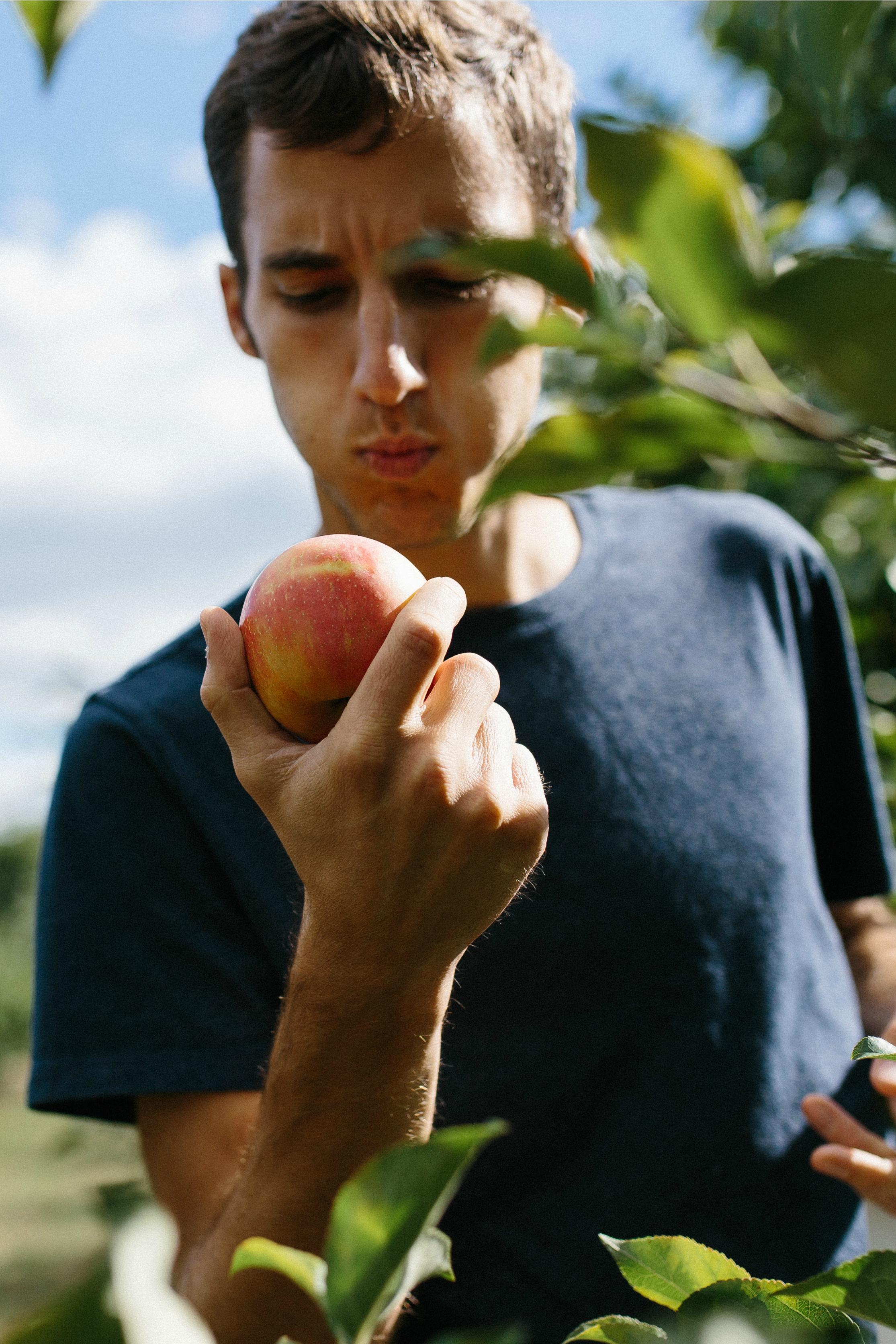 Rob Mayhew Dusting off an Apple