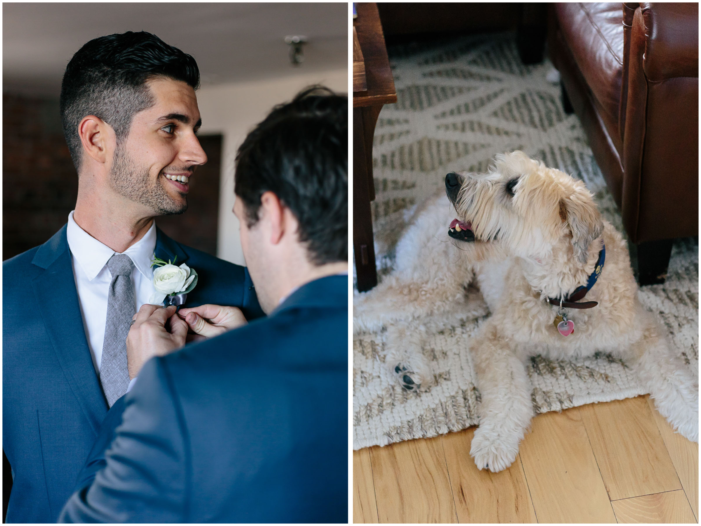 Nautical Massachusetts Jewish Wedding in the Boston Navy Yard groomsmen and dog