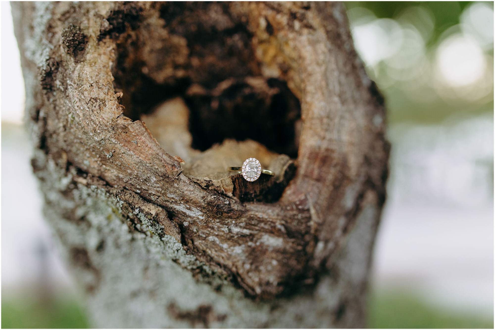 Close-up on a beautiful diamond engagement ring in a birch tree - by New Hampshire wedding photographer Ashleigh Laureen Photography in Lowell, Massachusetts