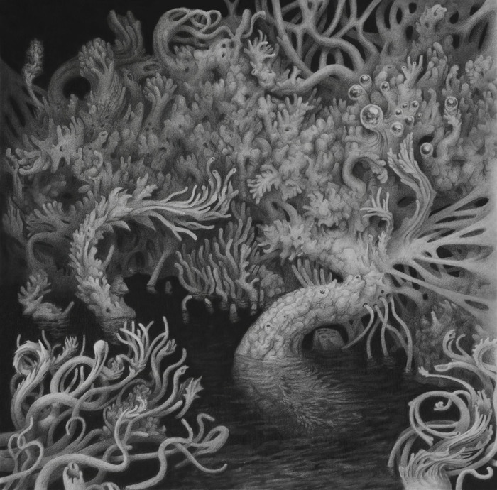 Ryan Wise, Overgrowth , 2015  Graphite  10 x 10 in.  $600