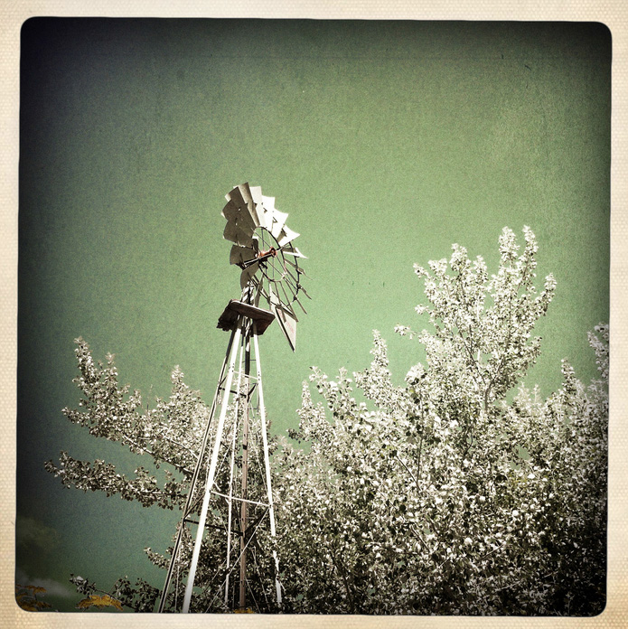Alinda Latham   Windmill , 2011  Photograph, archival pigment print