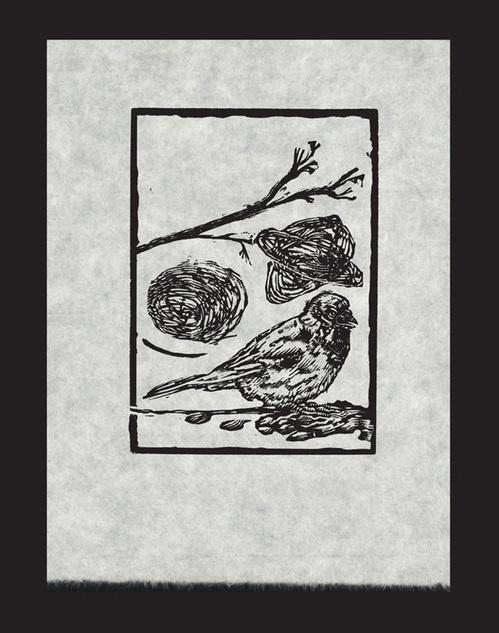 George Walker     Bird Thoughts 2, 2011    Wood engraving