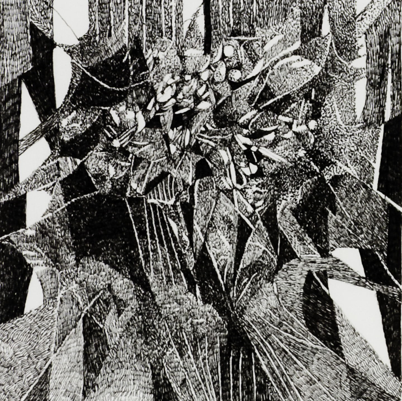Barbara Dahn   Tulipan #1 , 2008  Ink on paper