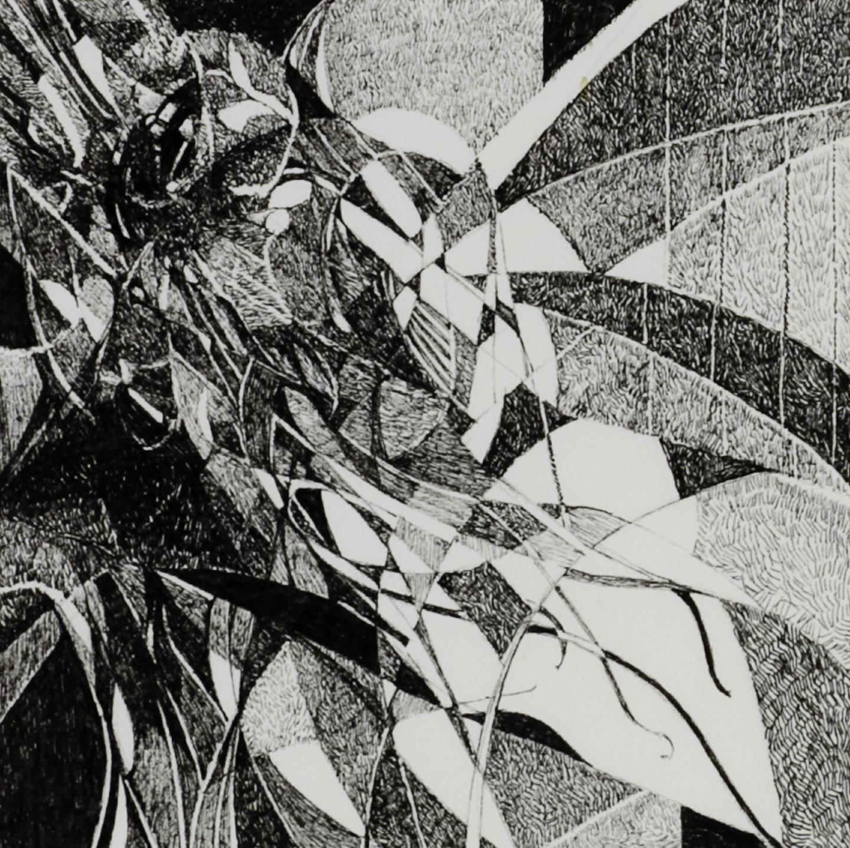 Barbara Dahn   Tulipan #2 , 2008  Ink on paper