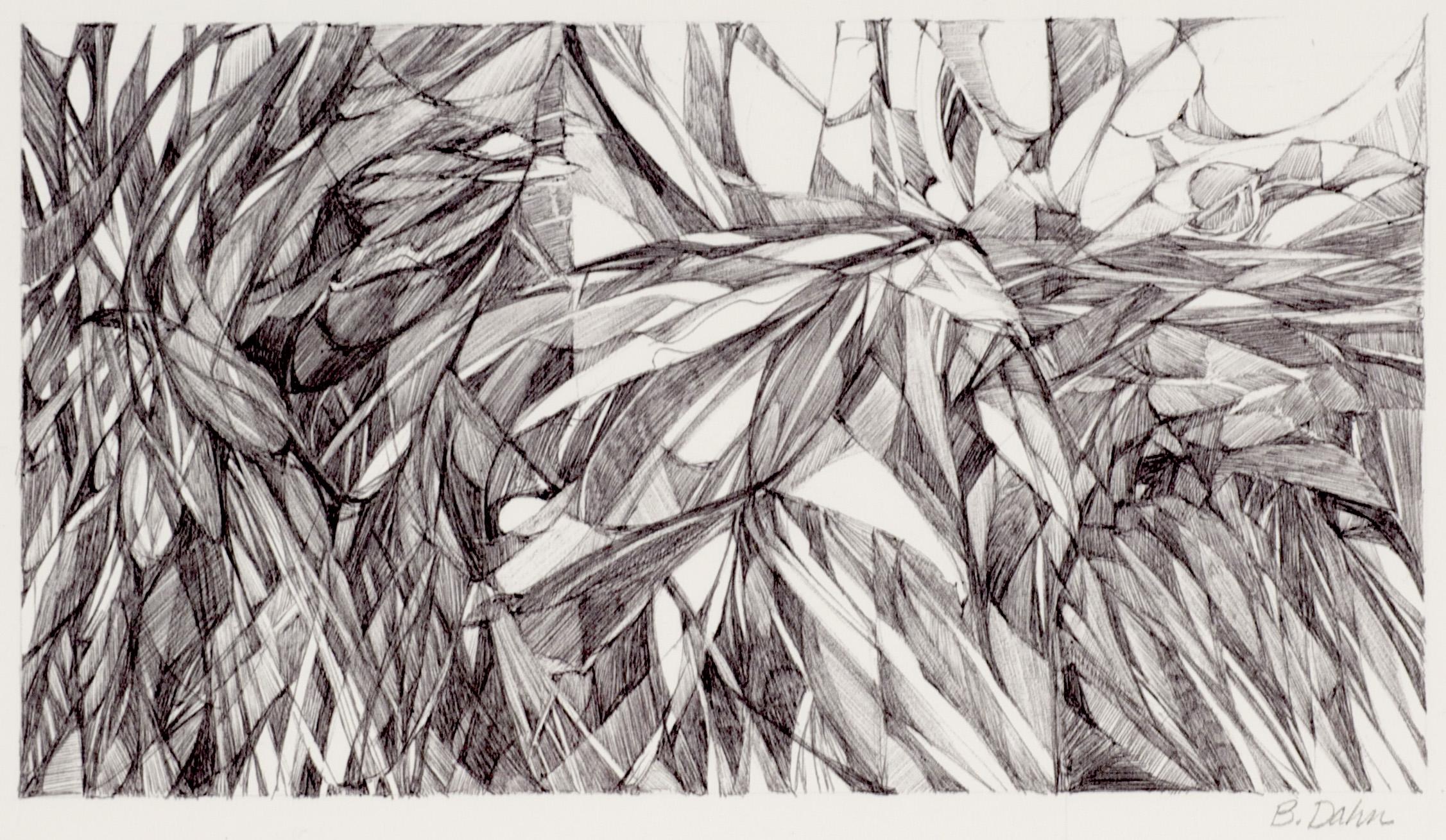 Barbara Dahn     El Centro , 2011  Ink on paper