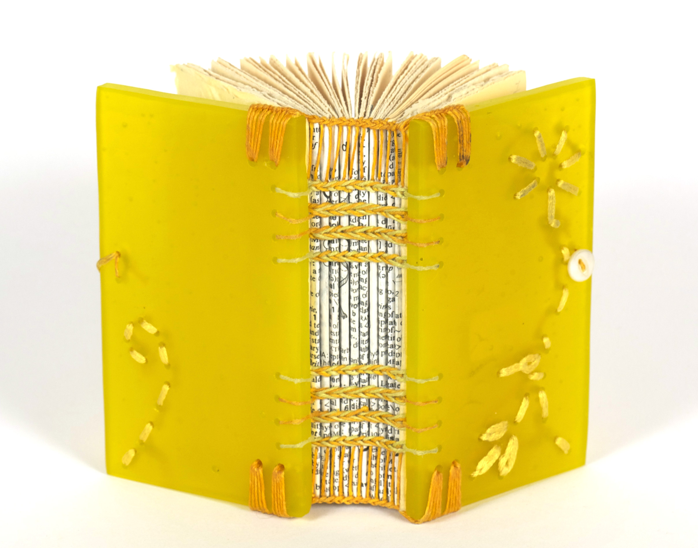 Donna Branch     Personal Scriptorium Book 29 , 2011  Glass and mixed media