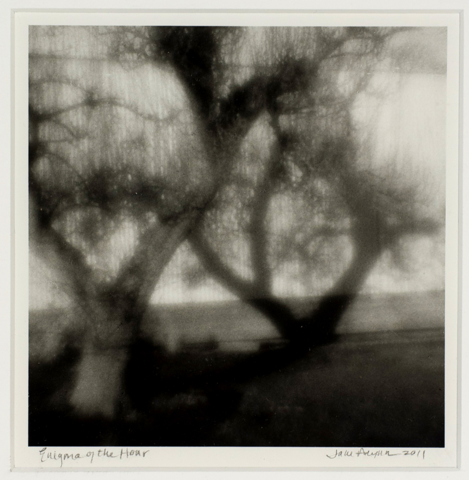 Jane Alynn     Enigma of the Hour , 2011  Zone plate photograph, silver gelatin print