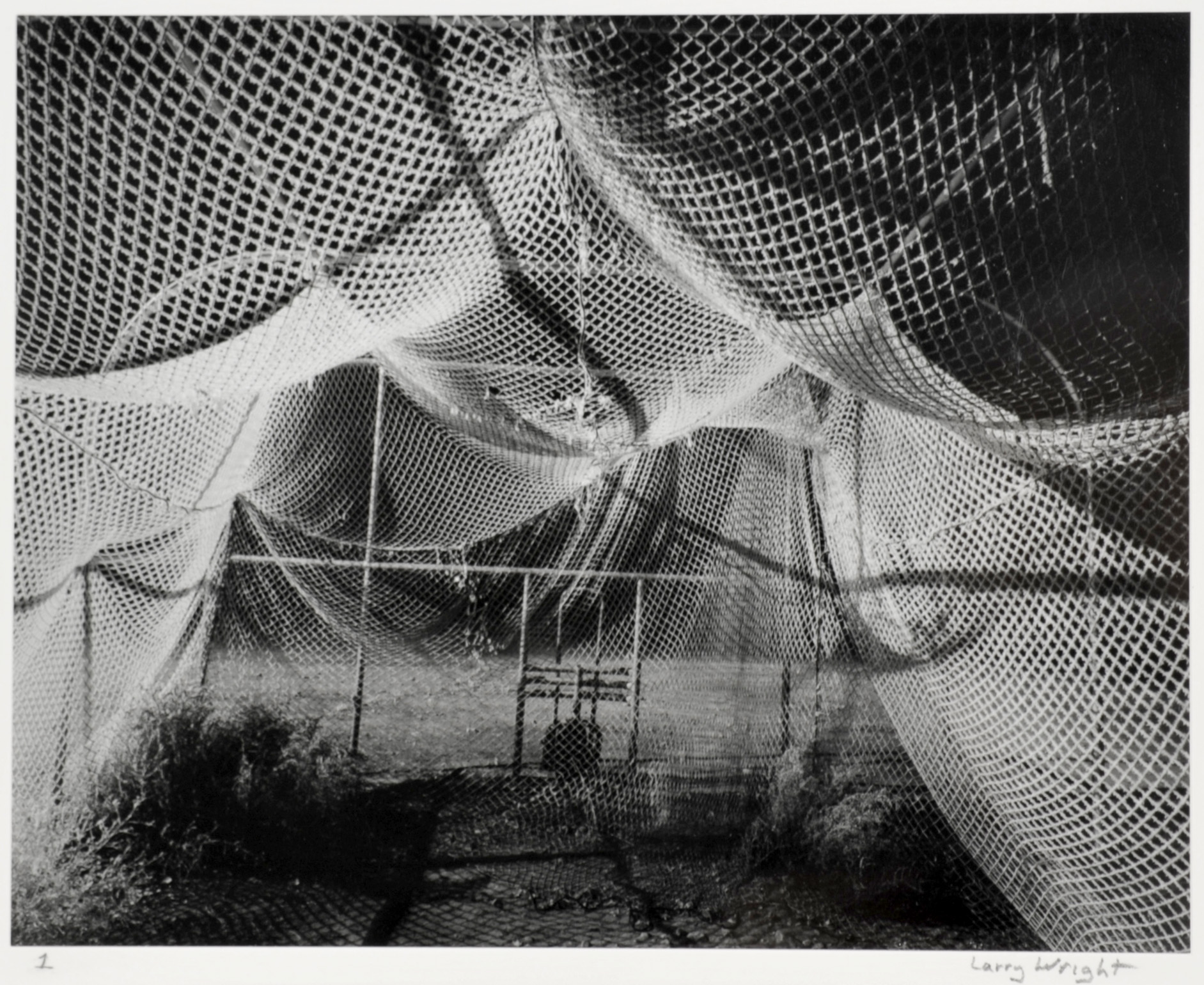 Larry Wright     Batting Case with Frost , 2011  Silver gelatin
