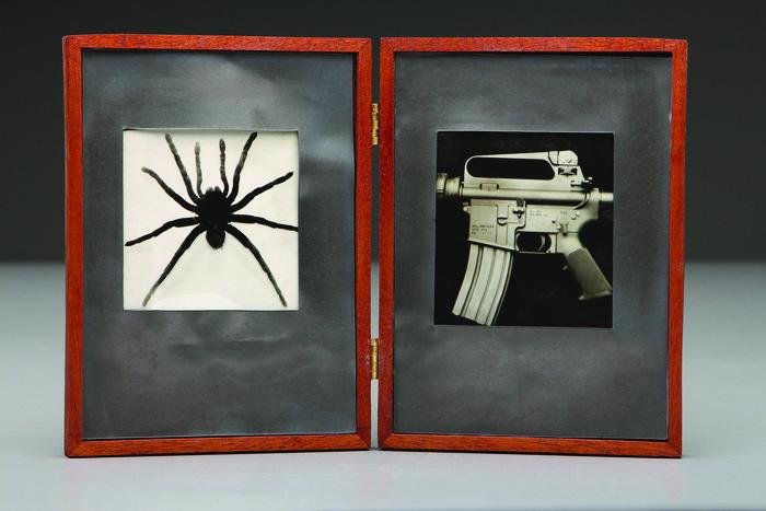 Leighton McWilliams      Spider/AR-15 , 2013     Photo sculpture