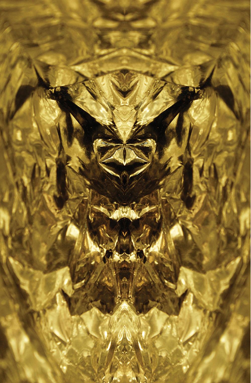 Galen Garwood   Golden Wasp, 2009  Photograph/digital art